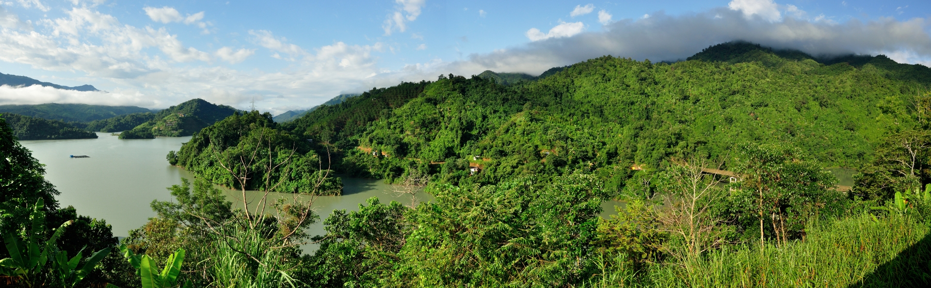A panoramic view of the Doyang reservoir, which was built in the year 2000, across the river Doyang, a tributary of the mighty Brahmaputra. Amur falcons roost on trees in the surrounding hills. Photo: Seshadri KS