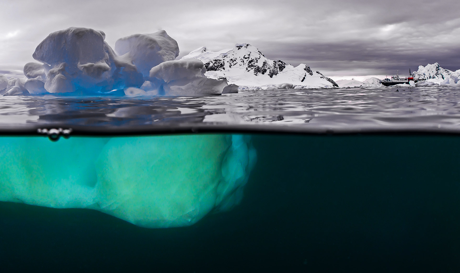 What Lies Beneath: Inside the Freezing Waters of Antarctica