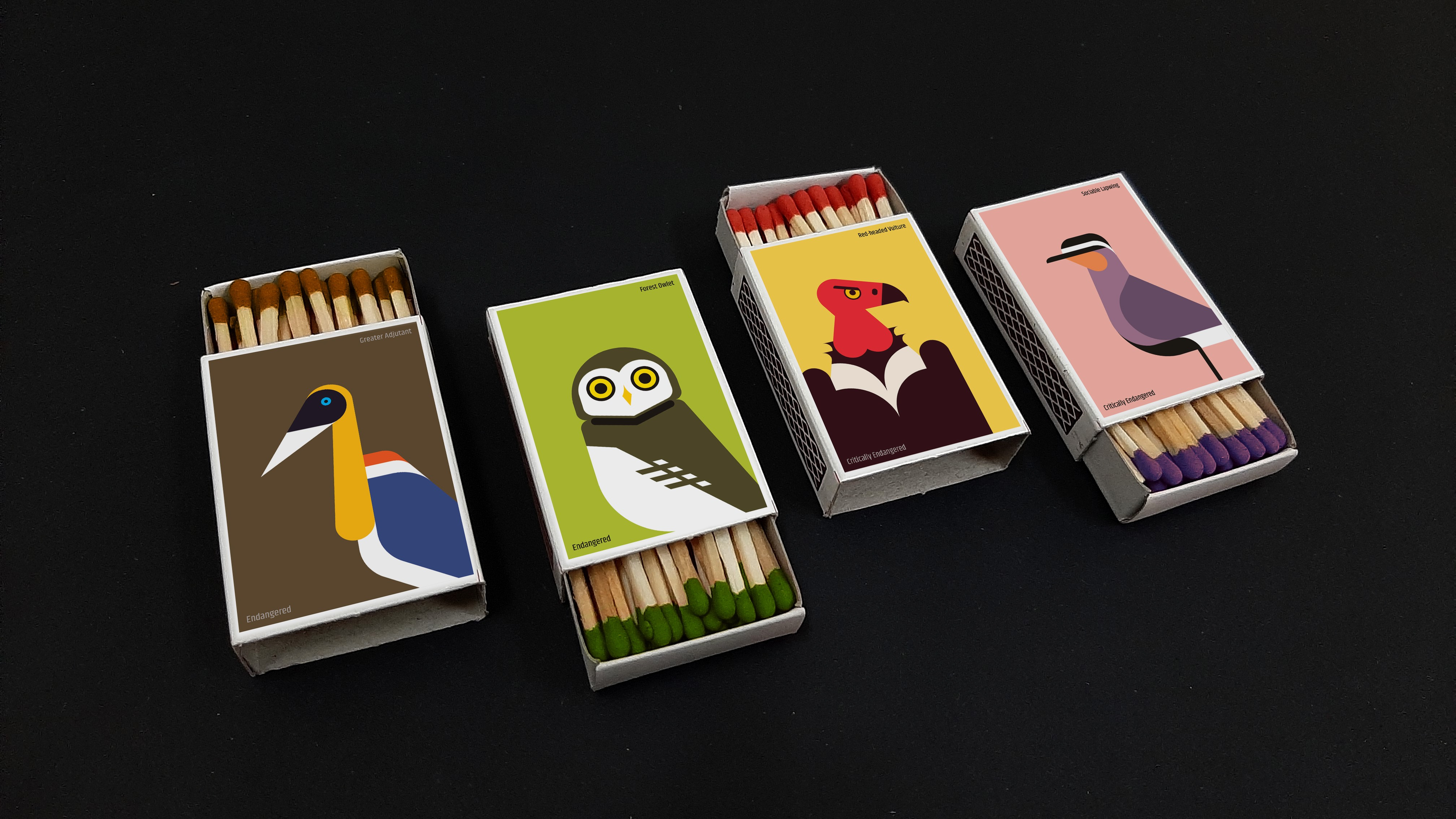 The Burning Birds of India's colourful matchboxes are designed to inspire people to learn about and protect birds that are in danger.