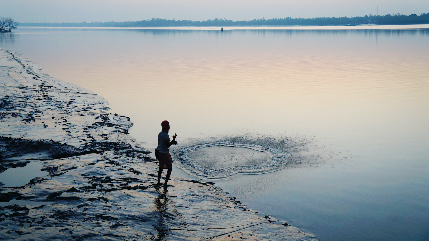 A fisherman hopes for a sizeable catch as he casts his net in the Datta river near Pakhiralay town. Fishing is major source of livelihood for communities living in and around the Sundarbans National Park. Photo: otorongo/Shutterstock  A mysterious swampy land filled with intrigue, the Sundarbans is the only mangrove forest in the world that hosts the Bengal tiger.  Cover photo: Upamanyu Roy