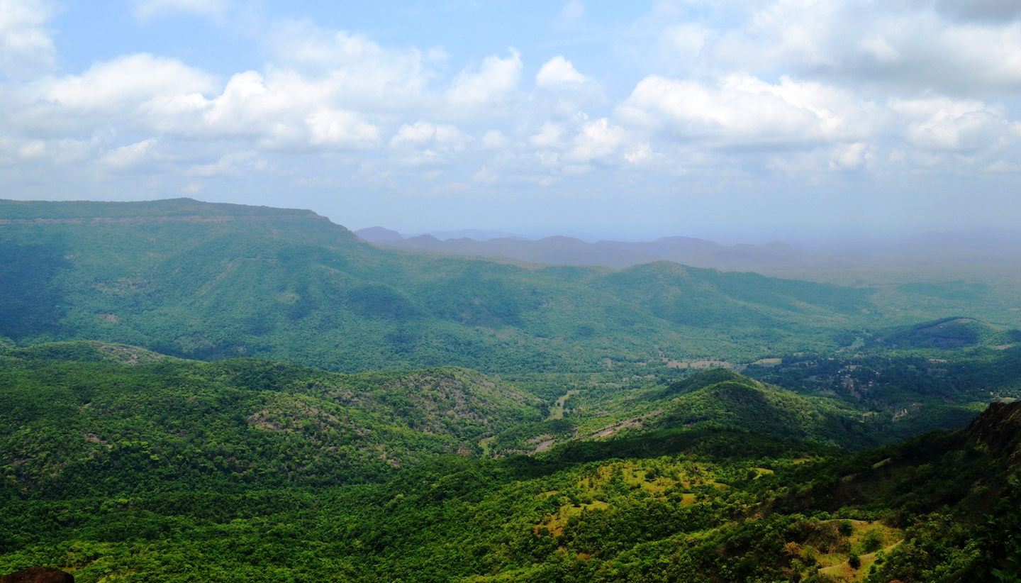 The northern arm of the Western Ghats in Maharashtra, commonly known as the Sahyadris is the source of important peninsular rivers including the Krishna and Godavari. Photo: Rhishikesh Agashe/Shutterstock   Cover Photo: Ajeevali devraai is two hours by road from Pune, Maharashtra, close to Pavana Dam. The sacred forest includes soaring fishtail palms and is a treasure trove of biodiversity. Cover Photo: Vivek Kale