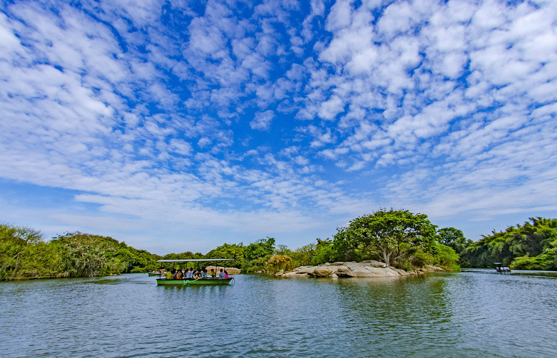 Visitors explore Ranganathittu Bird Sanctuary on a boat safari which takes them along six islets for a close look at the sanctuary's wide variety of birds.