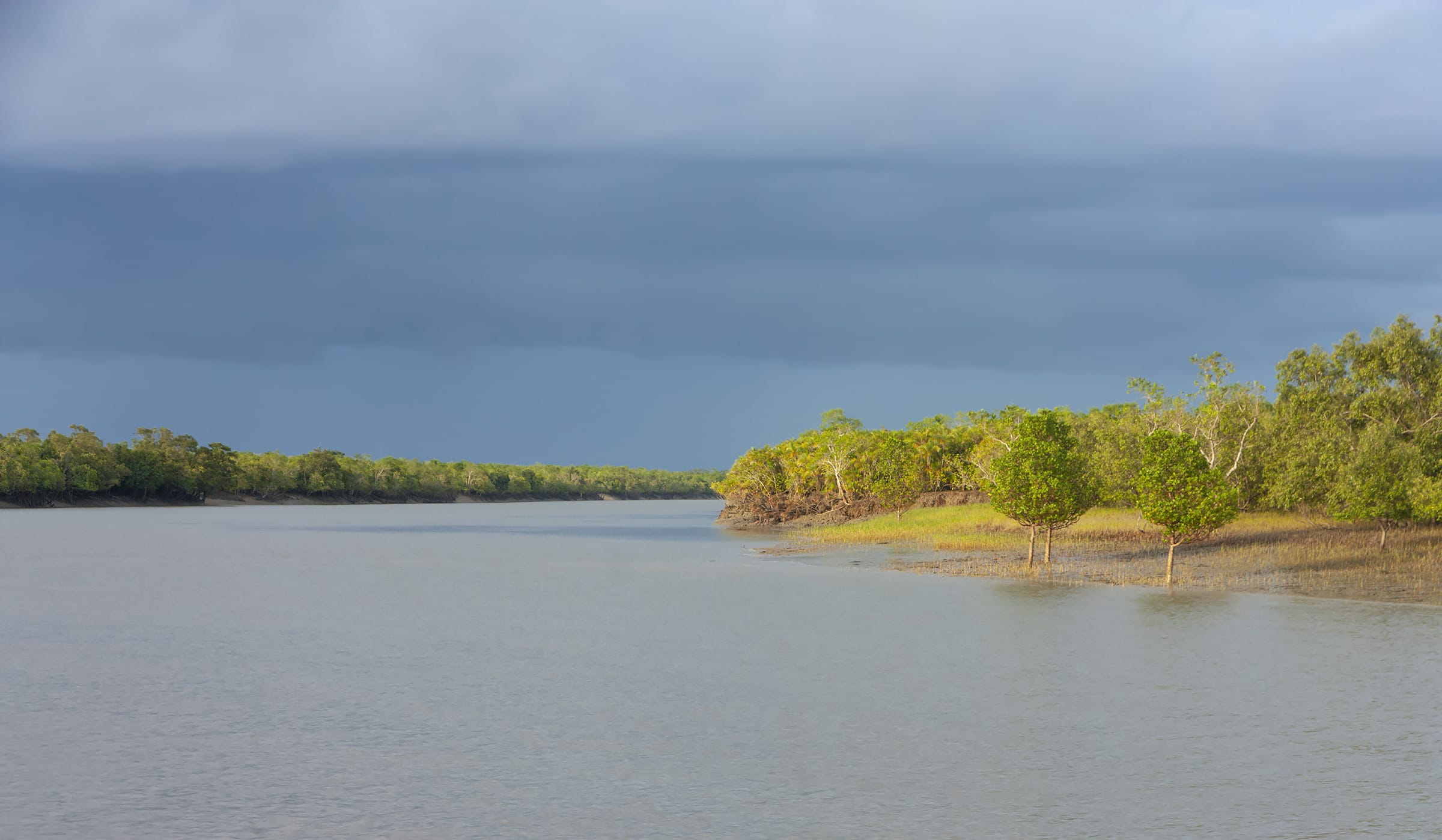 Migrating Mangroves: Why Sundarbans' Coast Guards Are Moving