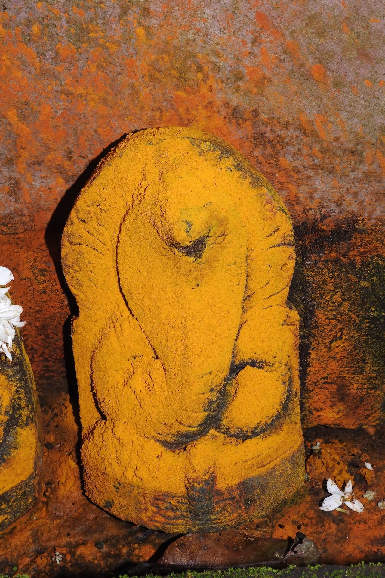 The cobra is revered in Hindu mythology and shrines dedicated to the snake are found across India.