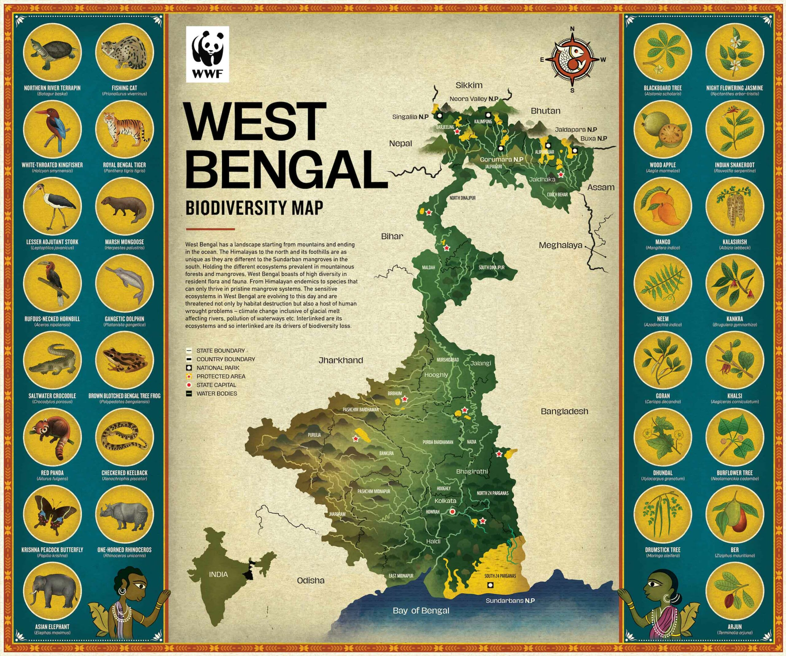 (Top) This detailed map of Odisha, Shaw's home state, reflects his intimate knowledge of the region's flora, fauna, and tribal heritage. (Above) A recently released map of West Bengal.  Cover Photo: Sudarshan Shaw, artist and naturalist from Odisha. Cover Photo Courtesy: Sudarshan Shaw