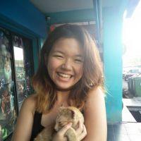 Shin Ling's dog boarding