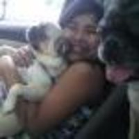Robin's dog boarding
