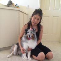 pet sitter Yumi