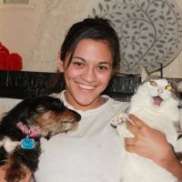 Angie & Matthew's dog day care