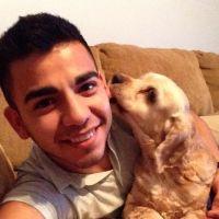 Ed's dog day care