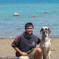 Anish's dog day care