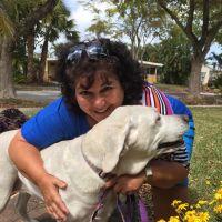Rachelle's dog boarding