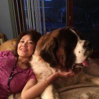 Billie's dog day care