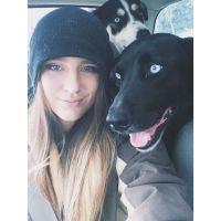 Bree's dog boarding