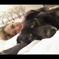 pet sitter Anastasya
