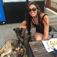 Victorya's dog day care