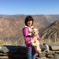 Keiko's dog boarding
