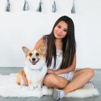 Kay's dog boarding