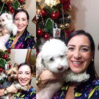 Silvia's dog day care