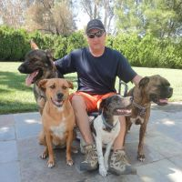 Douglas's dog day care