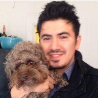 Xavier's dog boarding