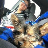 Maggi's dog day care