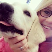 Katharine's dog day care