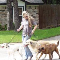 dog walker Sherami