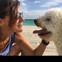Patri's dog day care