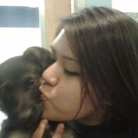 Ranita's dog day care