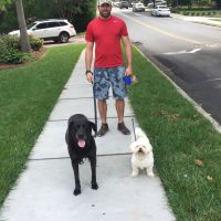 dog walker Brett