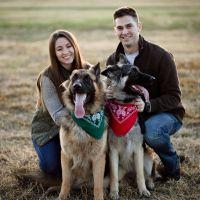 Bethany's dog day care