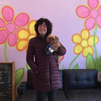 Denise's dog boarding