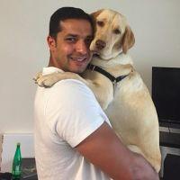 Tarek's dog day care