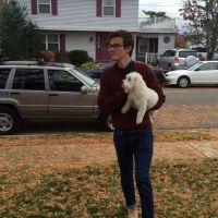 Lucas's dog boarding
