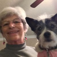 pet sitter Thelma