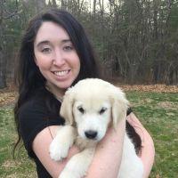 Makinsy's dog day care