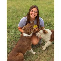 pet sitter Morgan