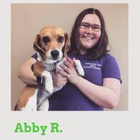 pet sitter Abby