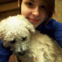 dog walker Haylie