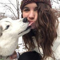 Emily's dog boarding