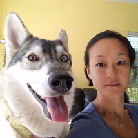 Hisui's dog day care