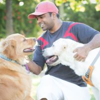 Venkata's dog boarding