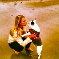 Kelly 's dog boarding