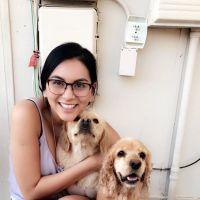 Luz's dog boarding