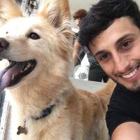 Jose's dog day care