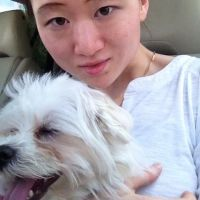 dog walker Yuhan