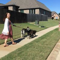 dog walker Hollyn