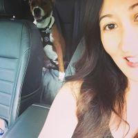Liza's dog day care