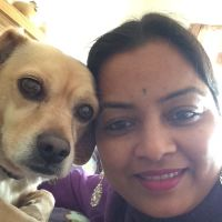Geeta's dog day care